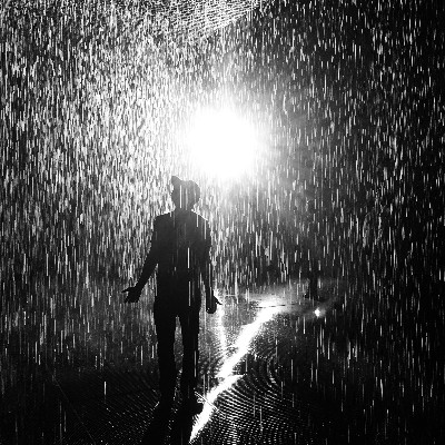 The Rain Room in LA - Berkshire Fine Arts