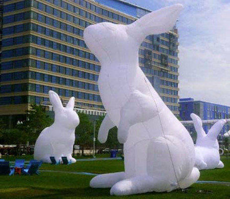 Big White Bunnies