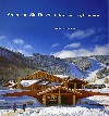 read American Ski Resort: Architecture, Style Experience